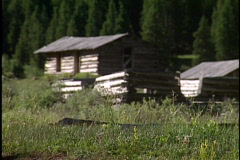 Log cabin in forest Stock Footage