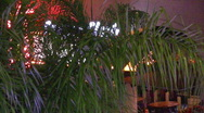 Stock Video Footage of Vegas style lights behind palm trees HD