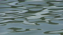 Water ripple closeup 06 Stock Footage