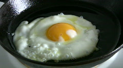 Fried egg - stock footage
