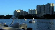 Lake Eola Park in Orlando  in late evening Stock Footage