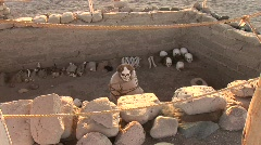 Mummy, Paracas, Peru Stock Footage