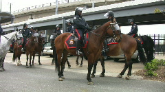 Toronto Mounted Police. Stock Footage
