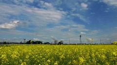 Electric power plant, Rape oil field Stock Footage