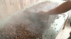 Fresh Roasted Coffee Beans Stock Footage