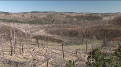 P00232 Post Burn in Black Hills Stock Footage