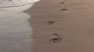 Stock Video Footage of Vanishing footprints on the beach