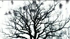Tree of Terror - digital animation Stock Footage