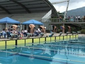Swimmer racing Stock Footage