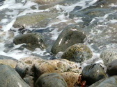 Incoming tide and granite pebbles Stock Footage