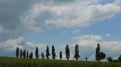 Germany Saxony Sandstone landscape, Rape field - stock footage