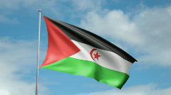 Flag of Western Sahara Stock Footage