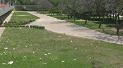 Garbage on the garden Stock Footage