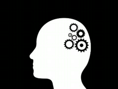 Cogs working in the brain...  Stock Footage