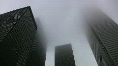 Misty skyscrapers. Stock Footage