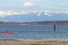 Kayaking On The Ocean Stock Footage