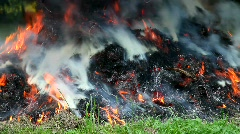 Fire in the garden Stock Footage