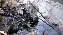 Oil spill in an Amazonian river Stock Footage
