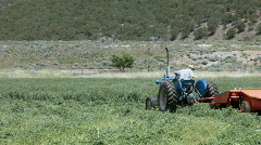 Tractor cut hay in corner P HD 0331 Stock Footage