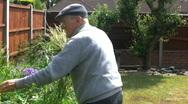 Elderly gentleman in the garden Stock Footage