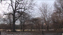 Winter in Central Park Stock Footage