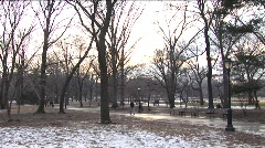 Winter in Central Park 2 Stock Footage