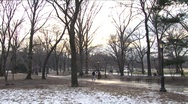 Stock Video Footage of Winter in Central Park 2