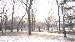 Winter in Central Park (Blownout) Stock Footage