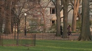 Stock Video Footage of Central Park stroll