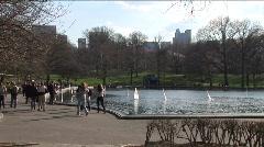 Central Park Pond Stock Footage