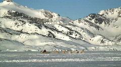 Male driving sledge Tiniteqilaq Greenland Stock Footage