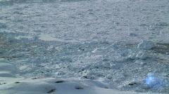 Seal Hunters Tiniteqilaq Greenland Stock Footage