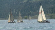Sail boat races Stock Footage