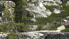 Hikers, walking, trail Stock Footage
