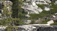 Hikers, walking, trail Stock Footage