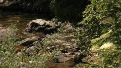 Stream and rock ( ruisseau et rochers ) Stock Footage