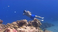 Stock Video Footage of free diver rising to surface