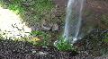 Waterfall dropping Water onto Rocks Footage