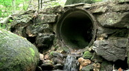 Water Trickling Out Of Pipe In Forest Stock Footage