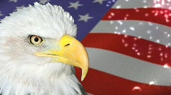 Eagle and Flag Fireworks Stock Footage