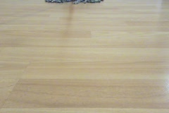 Mopping Hardwood Floor (Behind View) Stock Footage