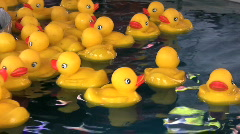 Rubber Duckies Floating In Circles Stock Footage