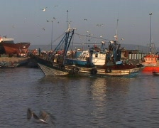 Fisherman boat entering the port in Essaouira Stock Footage
