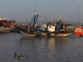 Stock Video Footage of Fisherman boat entering the port in Essaouira