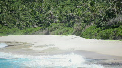 Natural sandy beach with palmtrees Stock Footage