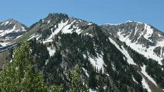 Wasatch Mountains spring thru tree P HD 0602 Stock Footage