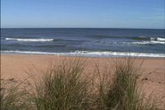 Atlantic beach in Florida Stock Footage