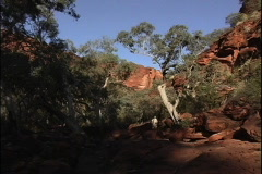 Australia Hiker in Kings Canyon Stock Footage