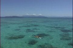 Australia Snorkling Great Barrier Reef  Stock Footage
