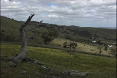 Australia View of Barossa Valley Stock Footage